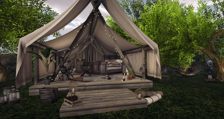 Gone Camping - In Style